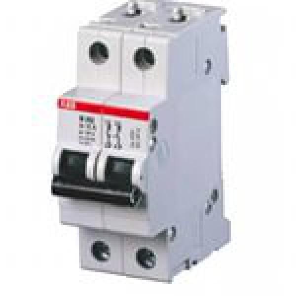 ABB Aвтоматич. выкл-ль 2-пол. SH202L C6